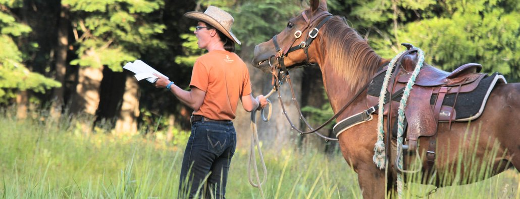 High Country RC - horse devotional